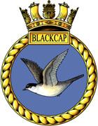 TS Blackcap